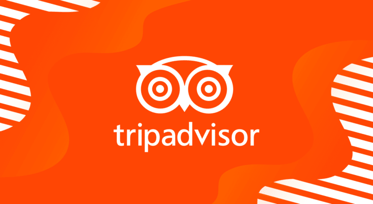the symbol of TripAdvisor in orange background